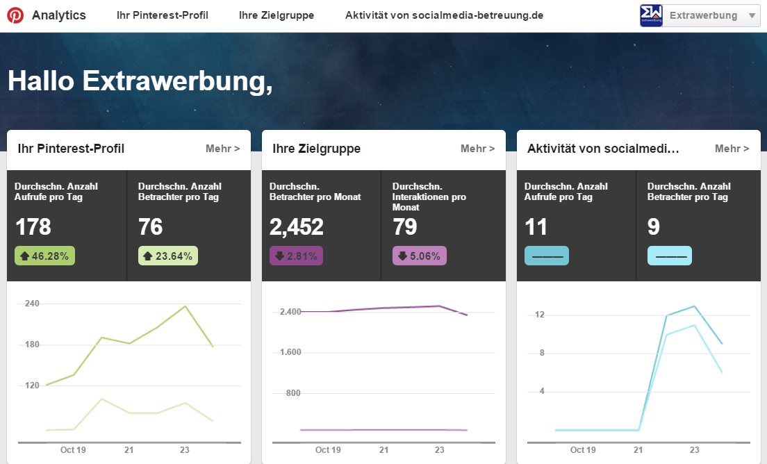 Pinterest_Analytics_im_Detail